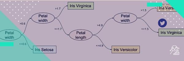 Explicabilité de modèles d'IA : Etat de l'art et vulgarisation scientifique